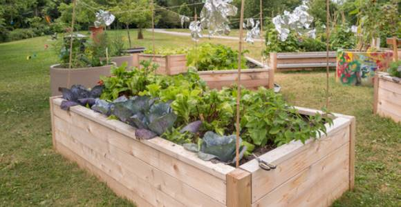 Potager sur lev profiter du jardin sans mal de dos - Plan jardin potager sureleve ...
